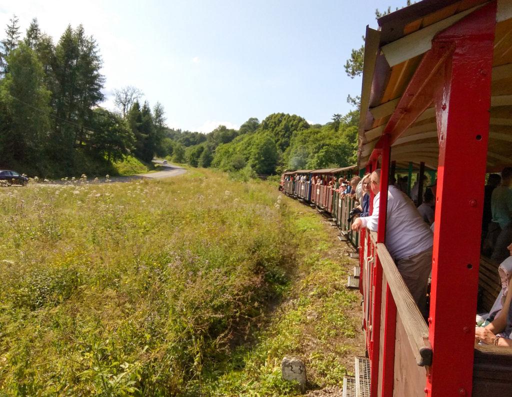 Bieszczadzka Kolejka Leśna na trasie Majdan Balnica