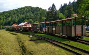 wagony bieszczadzkiej kolejki lesnej na stacji majdan
