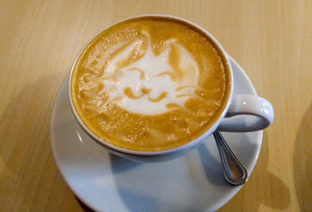atrakcje dla dzieci krakow kocia kawiarnia