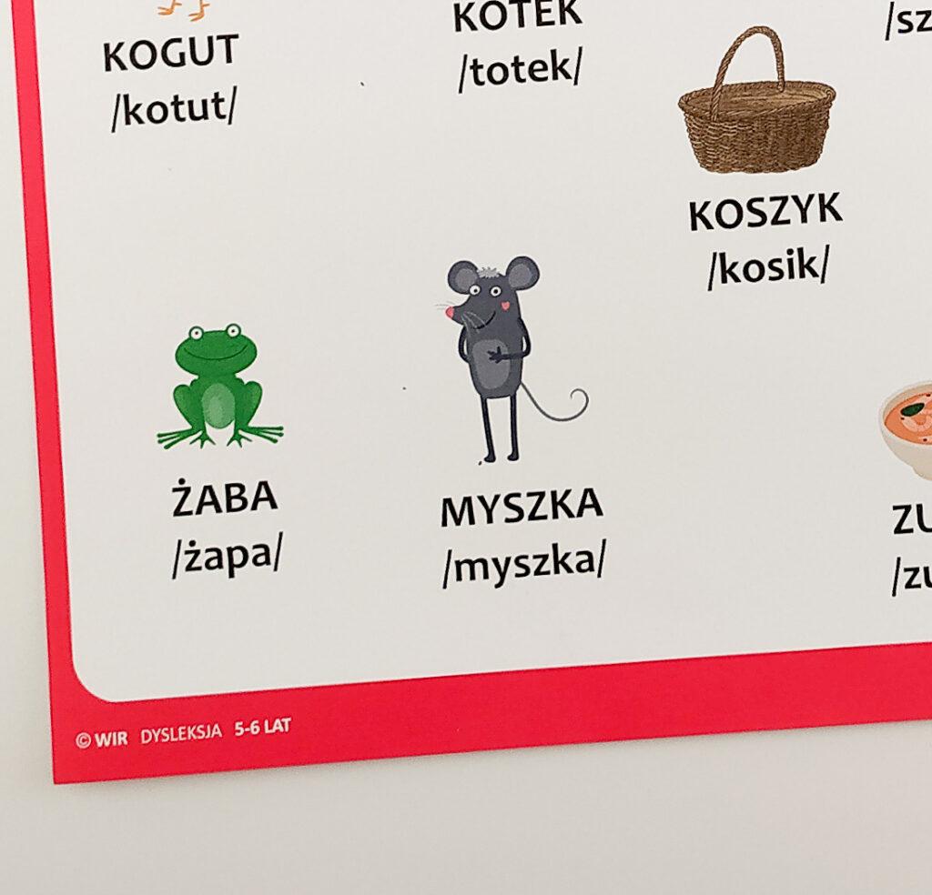 dysleksja cwiczenia funkcji poznawczych dla dzieci zagrozonych dysleksja agnieszka bala 45