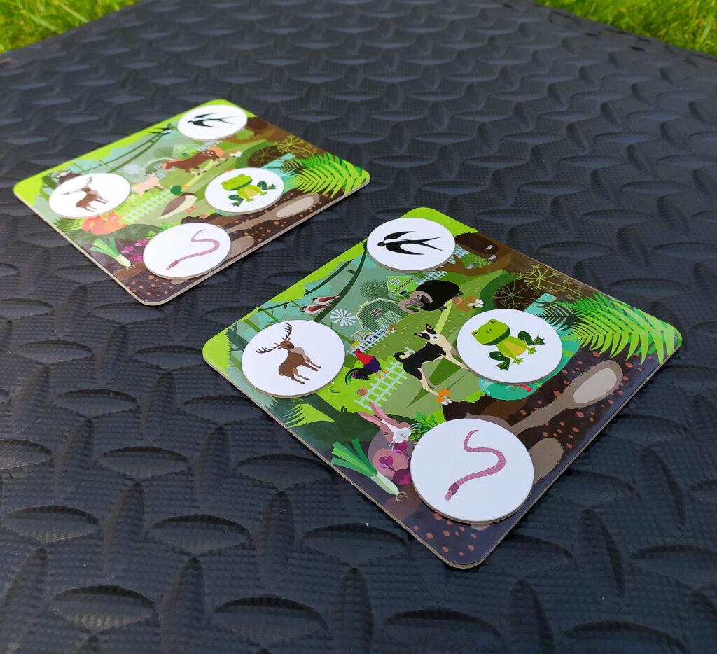 loteryjka zwierzeta lesne i wiejskie 25
