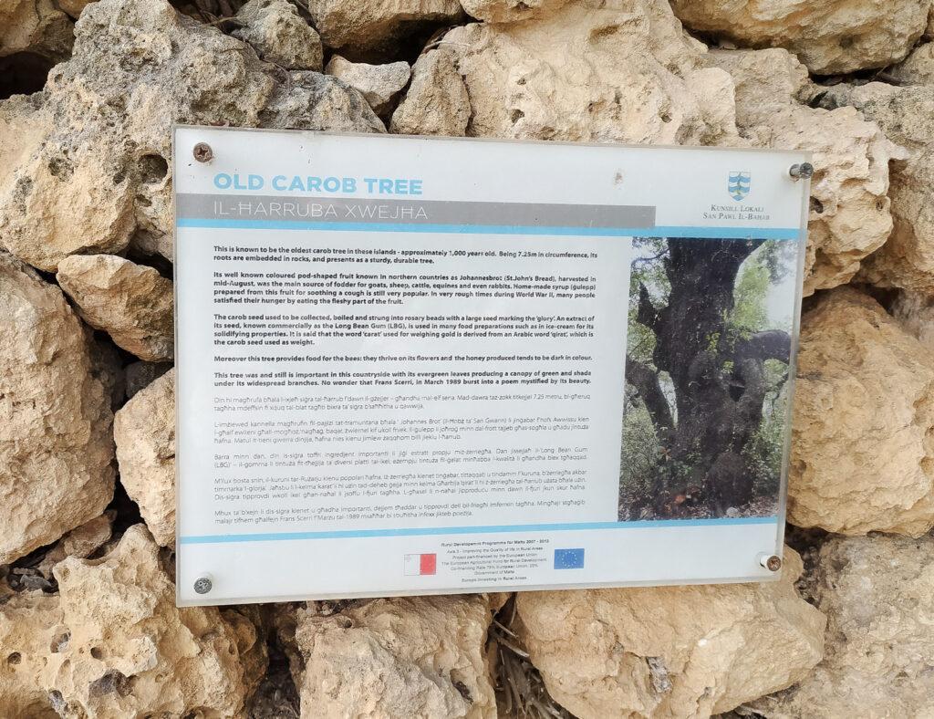 malta view point punkty widokowe 95