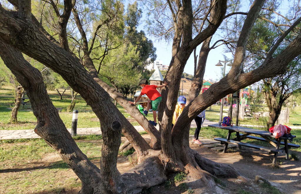 place zabaw malta buggiba salina play park 4