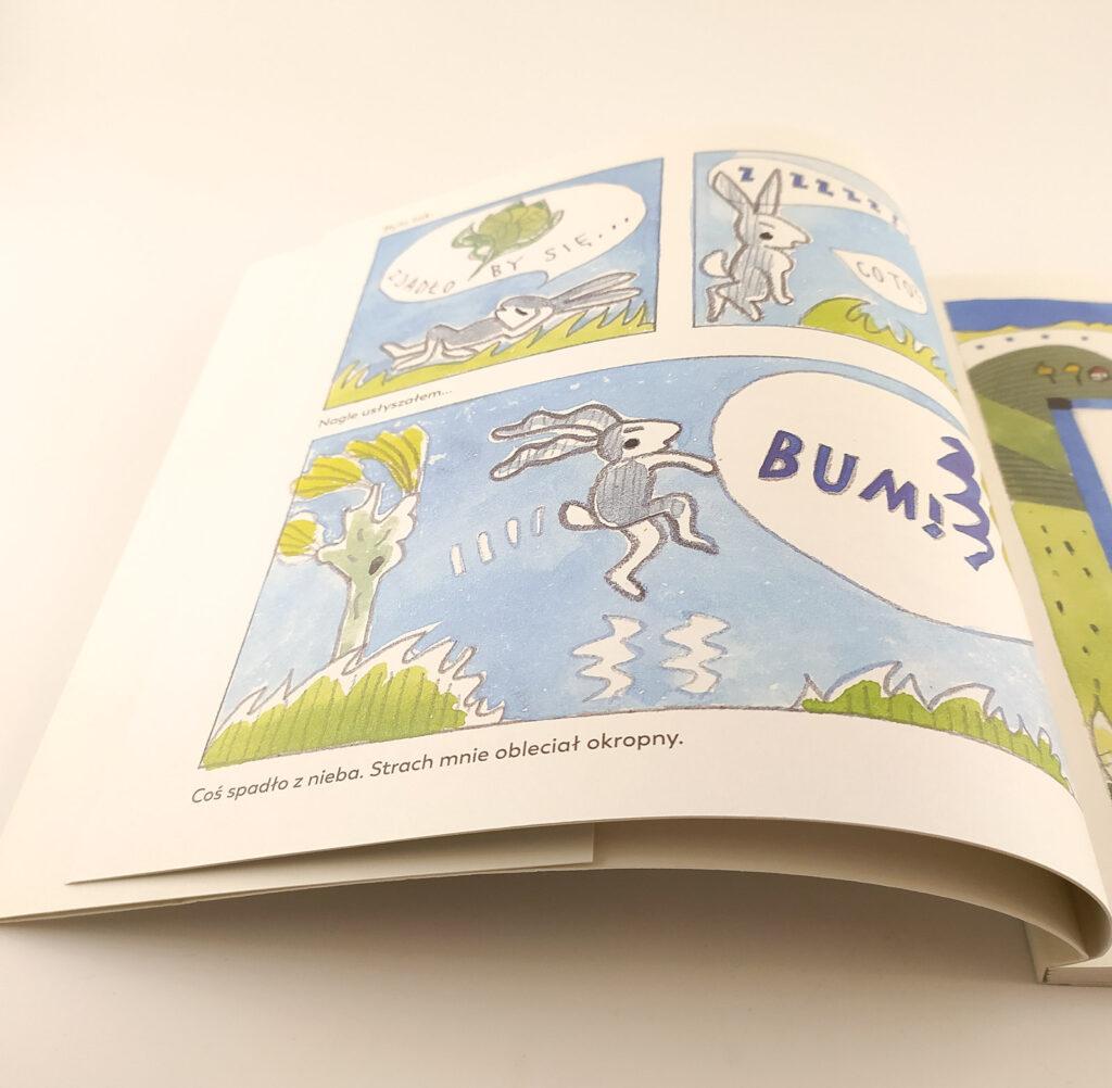 szare uszko komiks dla dzieci 5