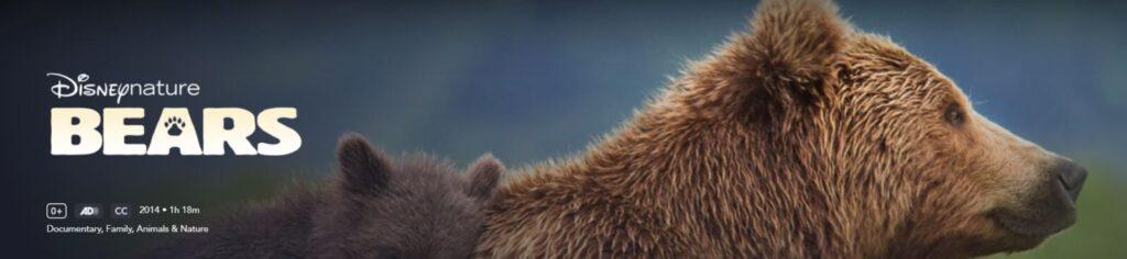 bears disney filmy edukacyjne