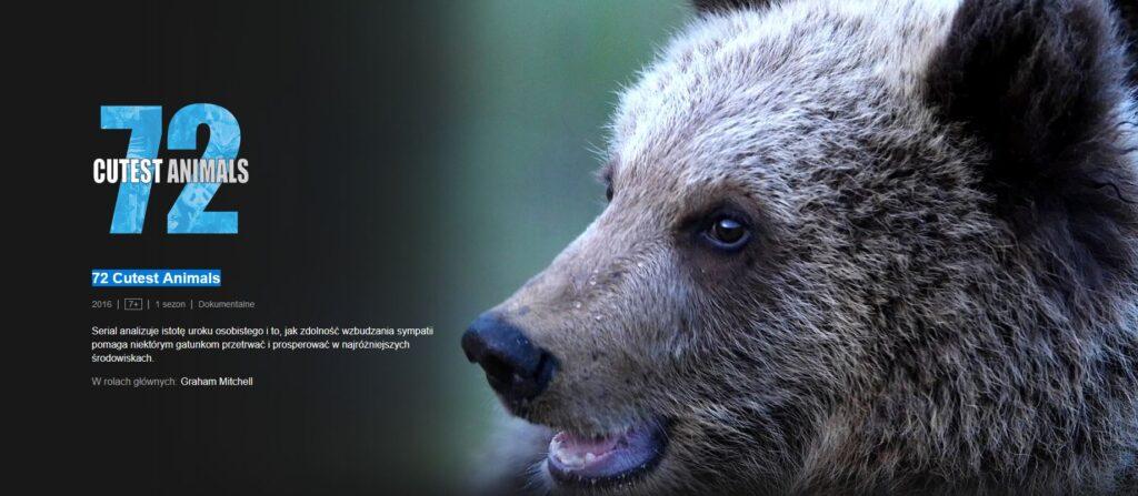 filmy edukacyjne dla dzieci netflix 72 cutest animals