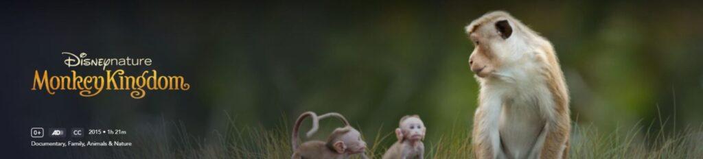 monkey kingdom disney filmy edukacyjne